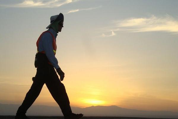 bob caminando a contraluz en una pradera