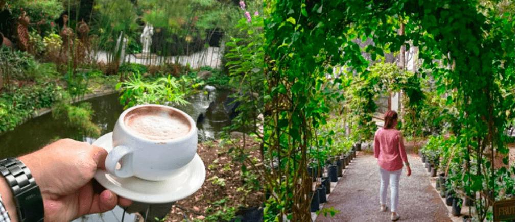 Escalonia Café