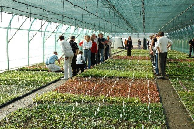 muestra de un campo dentro de un proyecto ecológico